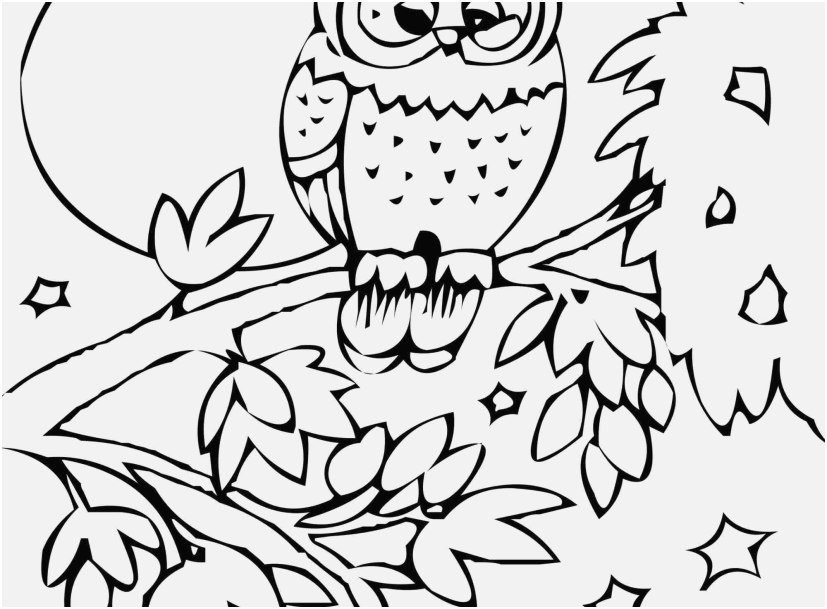 the perfect footage zoo animal coloring pages lovely