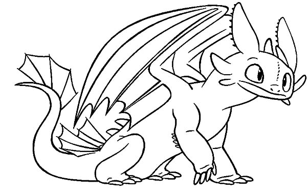 toothless sit calmly in how to train your dragon coloring