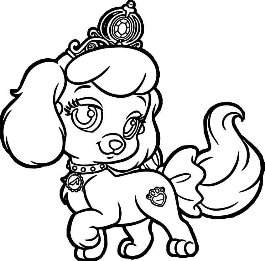 - Coloring Pages Puppy Collection - Whitesbelfast