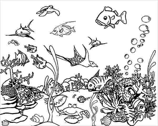 underwater coloring pages to print underwater coloring pages