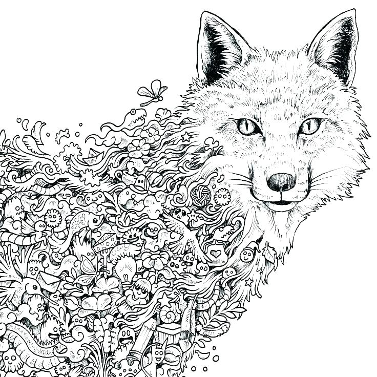 wolf coloring page pages for adults free printable animal