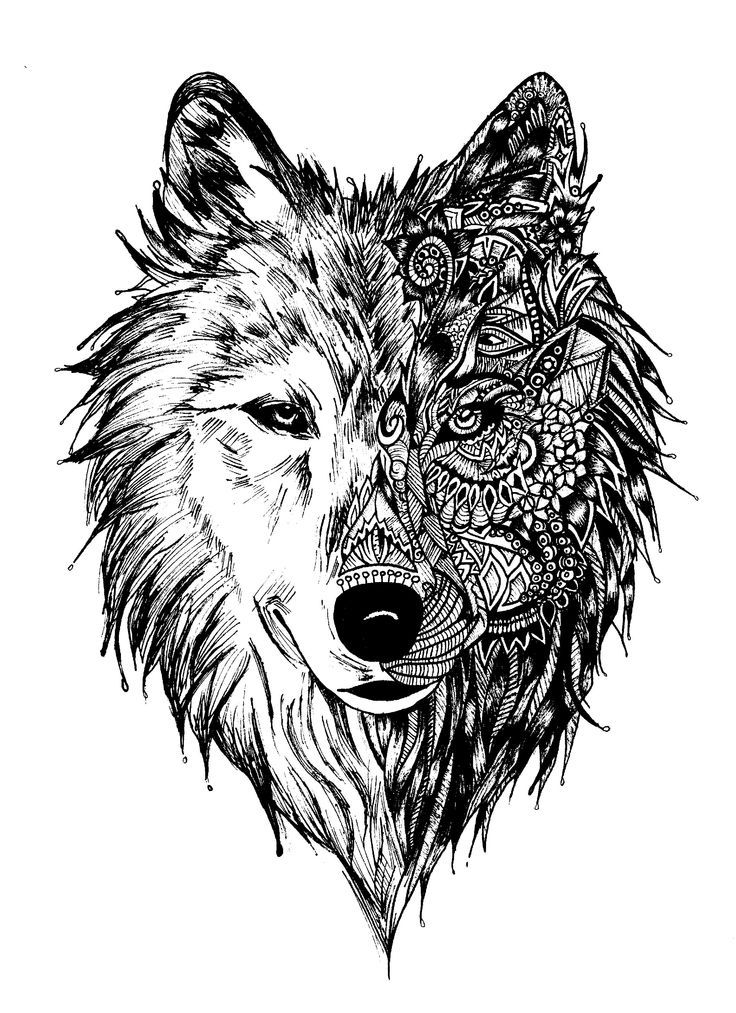 wolf coloring pages for adults best coloring pages for kids