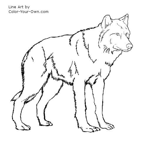 wolf coloring pages for kids wolf standing coloring page