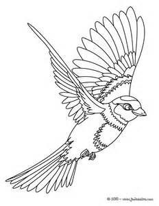 bird in flight stencils free printable bing images
