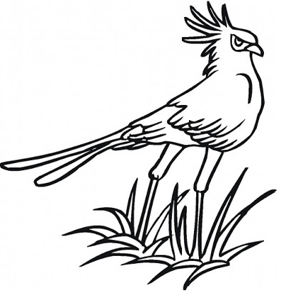 kids page birds coloring pages printable birds coloring