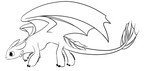 night fury dragon coloring page free printable coloring
