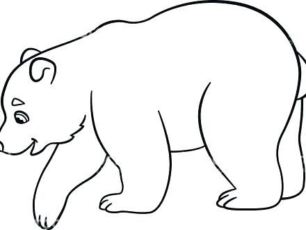polar bear coloring pages for preschoolers at getcolorings