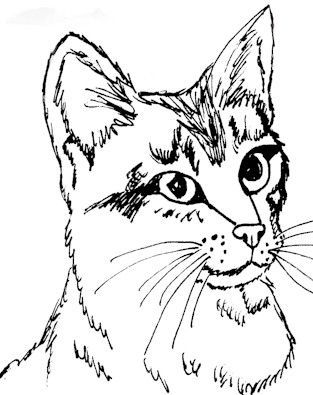 realistic cat coloring pages printable cat coloring page
