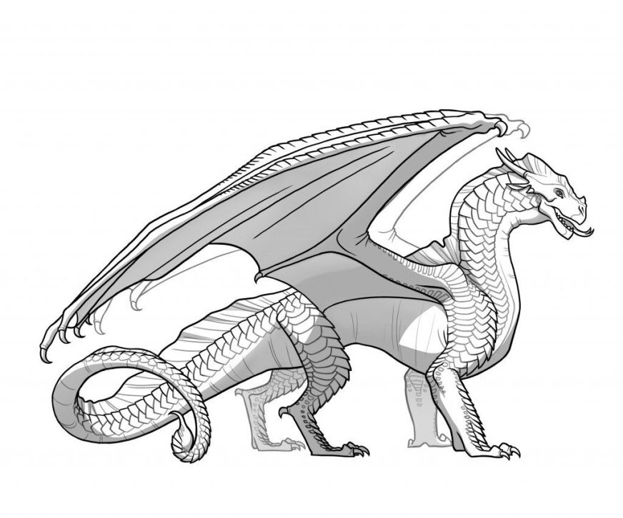 a nightwing guide to the dragons of pyrrhia dragon