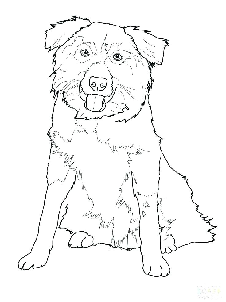 christmas shepherd coloring pages at getcolorings