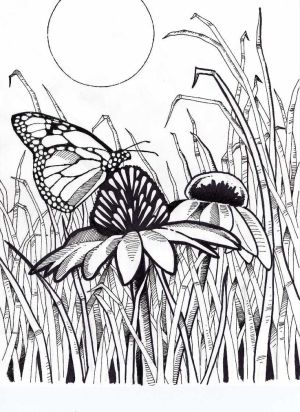difficult coloring pages for adults bing images iris