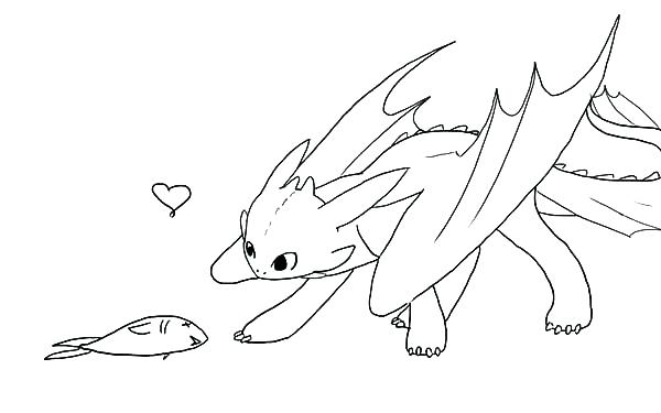 - Toothless Coloring Pages Gallery - Whitesbelfast