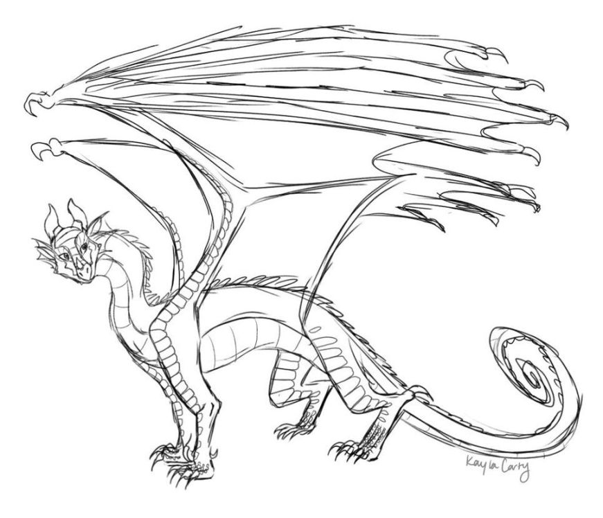 rainwing wip kaylascorner wings of fire dragon