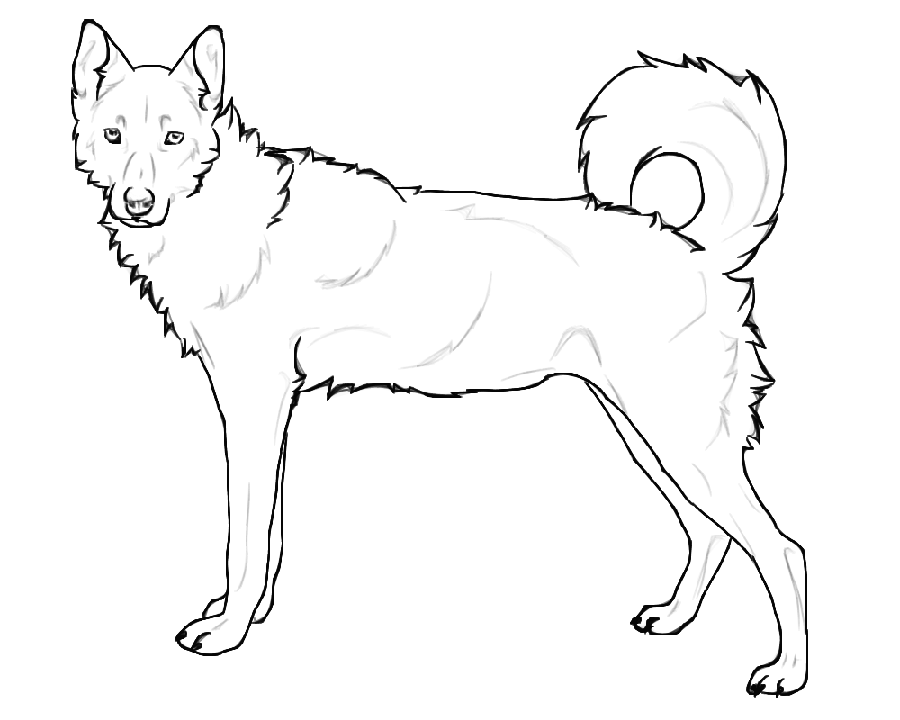 realistic german shepherd coloring pages at getdrawings