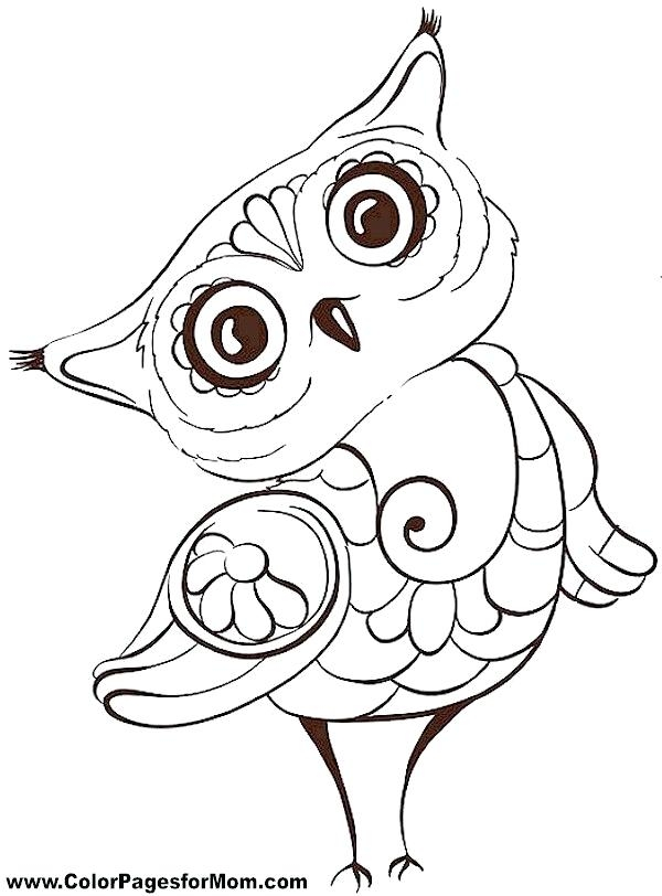 scary owl drawing at getdrawings free download