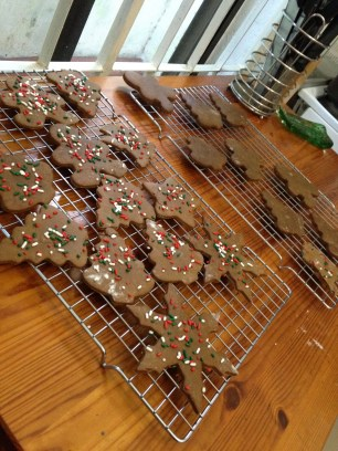 Home-made ginger bread cookies in prep for my sisters arrival