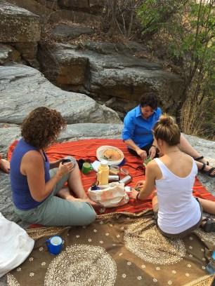 picnic at the waterfalls