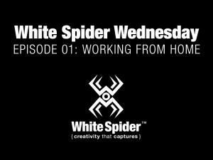 White Spider Inc