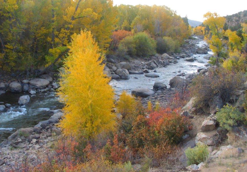 Colorado whitewater raftingq