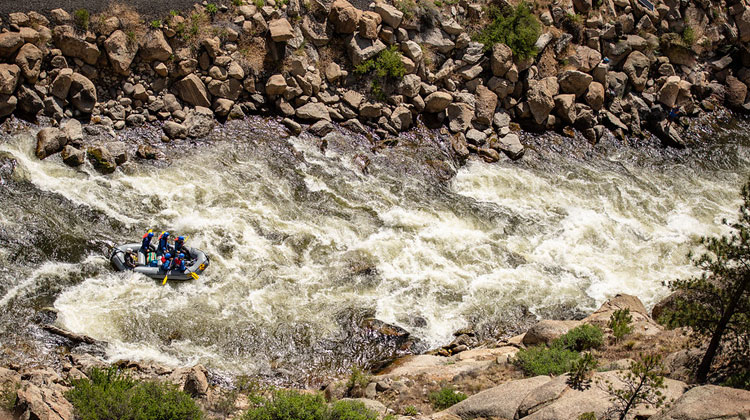Colorado raft guide jobs.