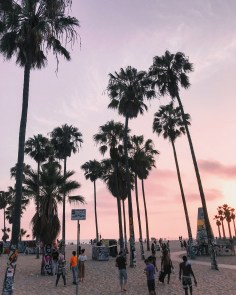 Venice Beach Boardwalk | Whitneybearr