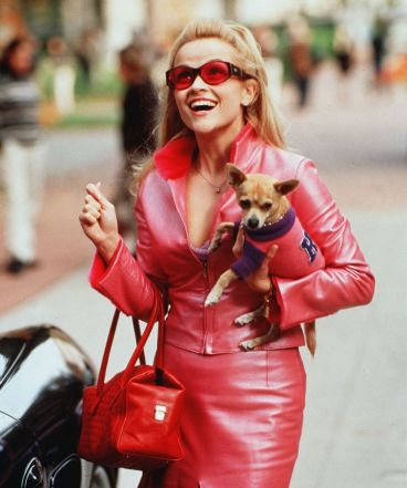 Elle Woods Legally Blonde Costume | Whitneybearr