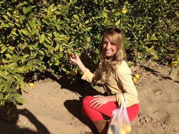 Whitney Bond Picking Oranges