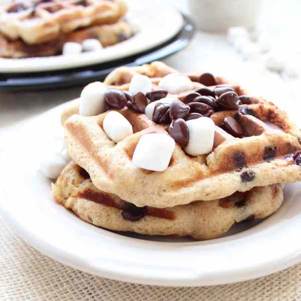 Gluten Free Chocolate Chip Waffles