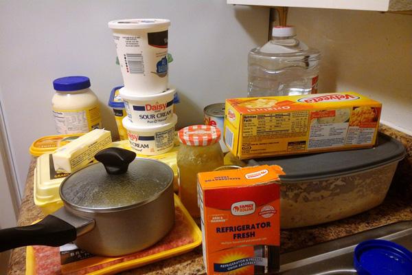 refrigerator food
