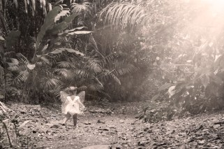 aramiez_fairy_dsc0119_fairy4
