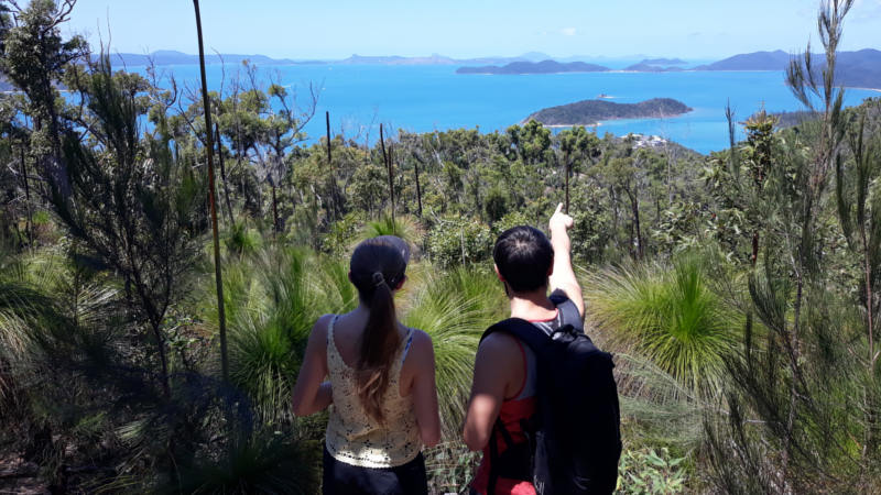 guided bush walk tour overlooking the whitsunday islands from a lookout