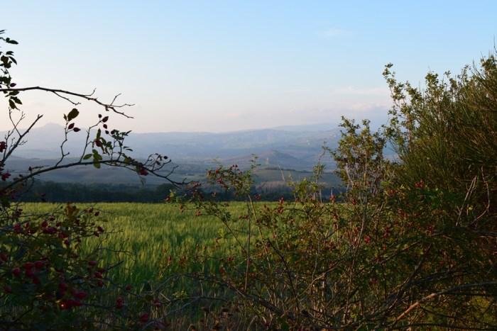 tuscan countryside la foce