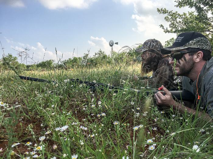 Hunting the Wascally Turkey
