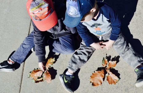 The boys learning about changing leaf colors.