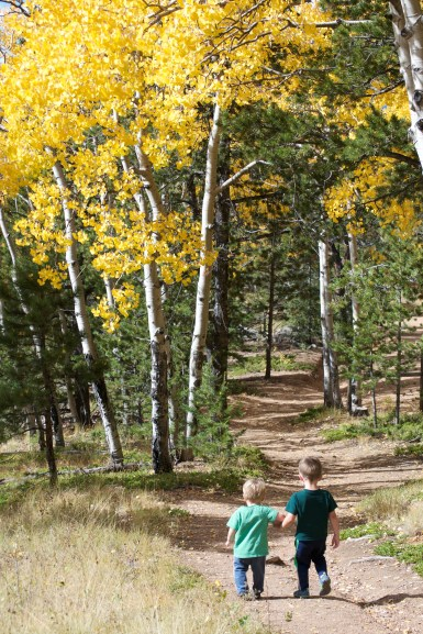 Two young toddlers running on a trail into a grove of aspen trees in colorado fall.
