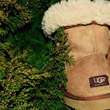 A pair of tan UGG boots with white fur at the top sitting among greenery.