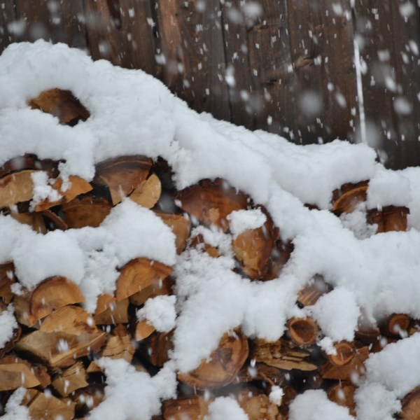 Winter snow falls on a wood pile.