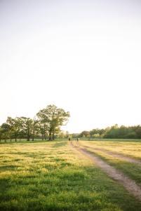 Farm Pasture in Jasper, Alabama