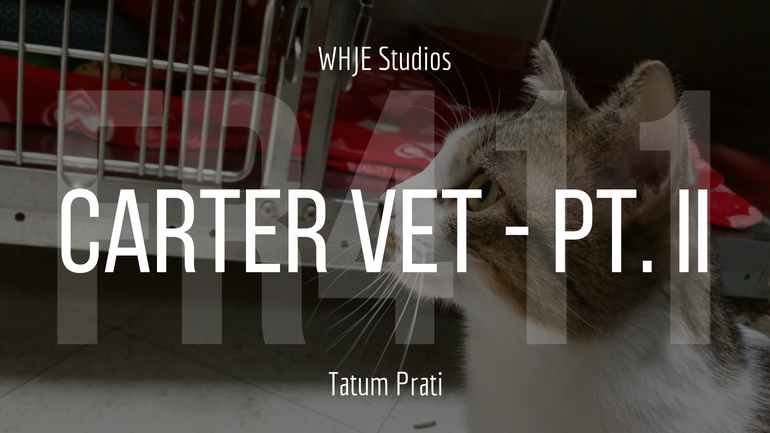 Carter Vet – Part II – FR411 #16