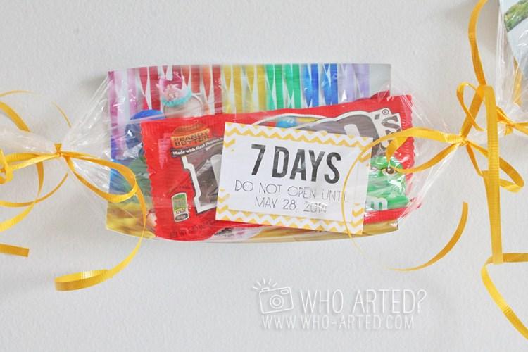 Birthday Garland Countdown Who Arted 13