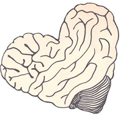 A drawing of a pale-pink brain reshaped into the shape of a heart.