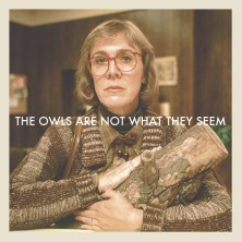 "The same image as above, showing how The Log Lady cradles her log. Caption reads, ""The owls are not what they seem."""
