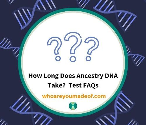 How Long Does Ancestry DNA Take? Test FAQs - Who are You