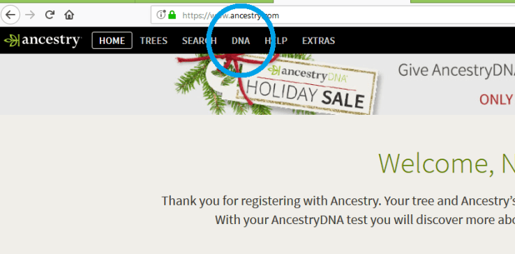 How to get to main DNA results page Ancestry