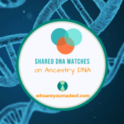 What are Shared Matches on Ancestry DNA?