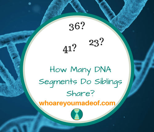 How Many DNA Segments Do Siblings Share?