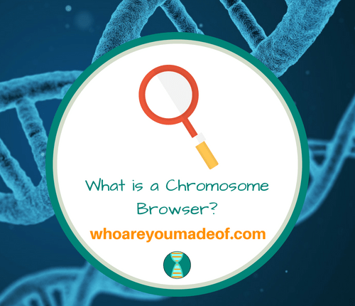 What is a Chromosome Browser_