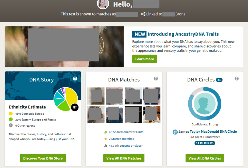 what do ancestry dna insights results look like?