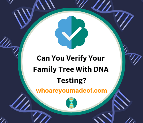Can You Verify Your Family Tree With DNA Testing_