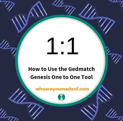 How to Use the Gedmatch Genesis One to One Tool